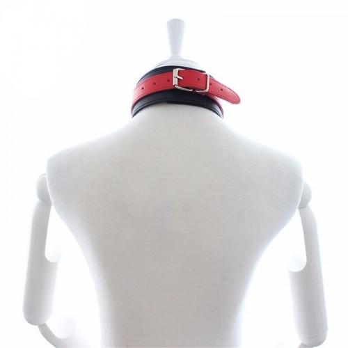 Ошейник с поводком red-black